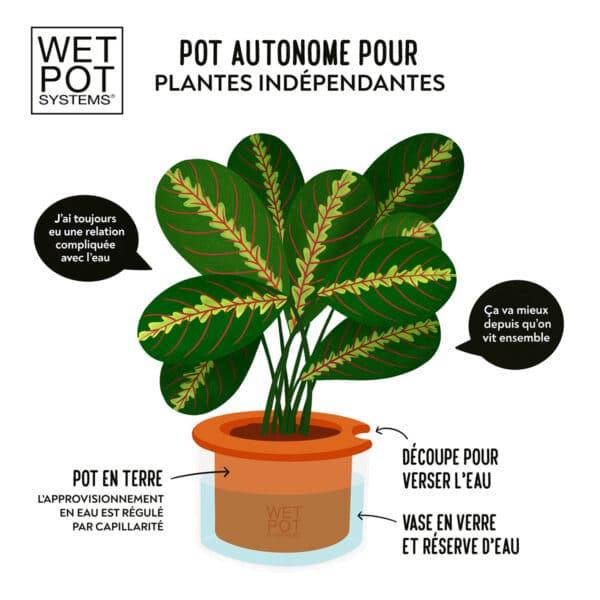 Fonctionnement pot WETPOT à réservoir d'eau en verre et ceramique